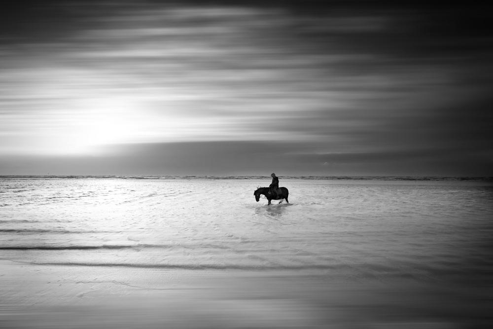 equine beach-3.jpg