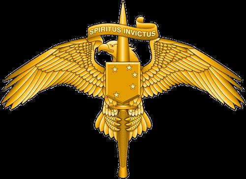 Marine Special Operator badge