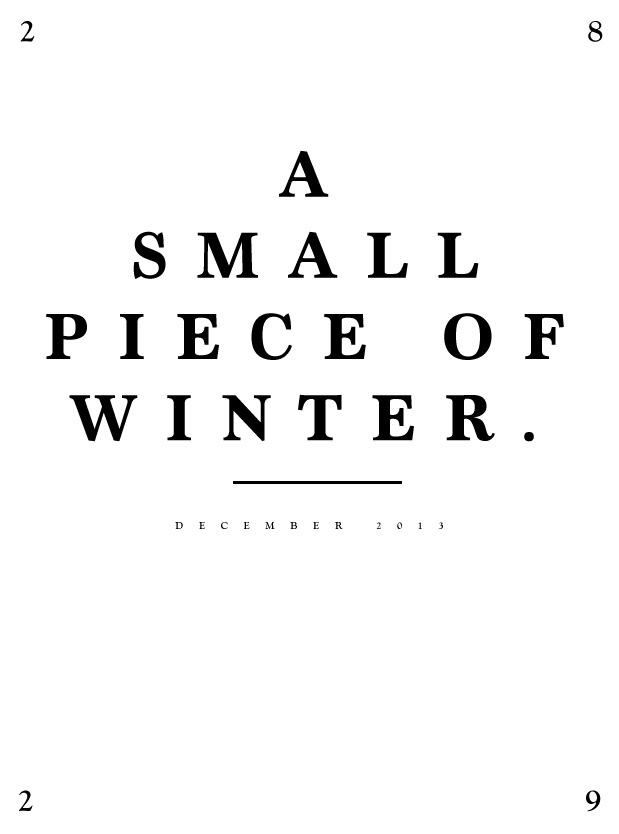 a-small-piece-of-winter.jpg