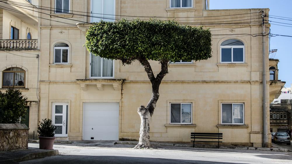 malta_2015.jpg