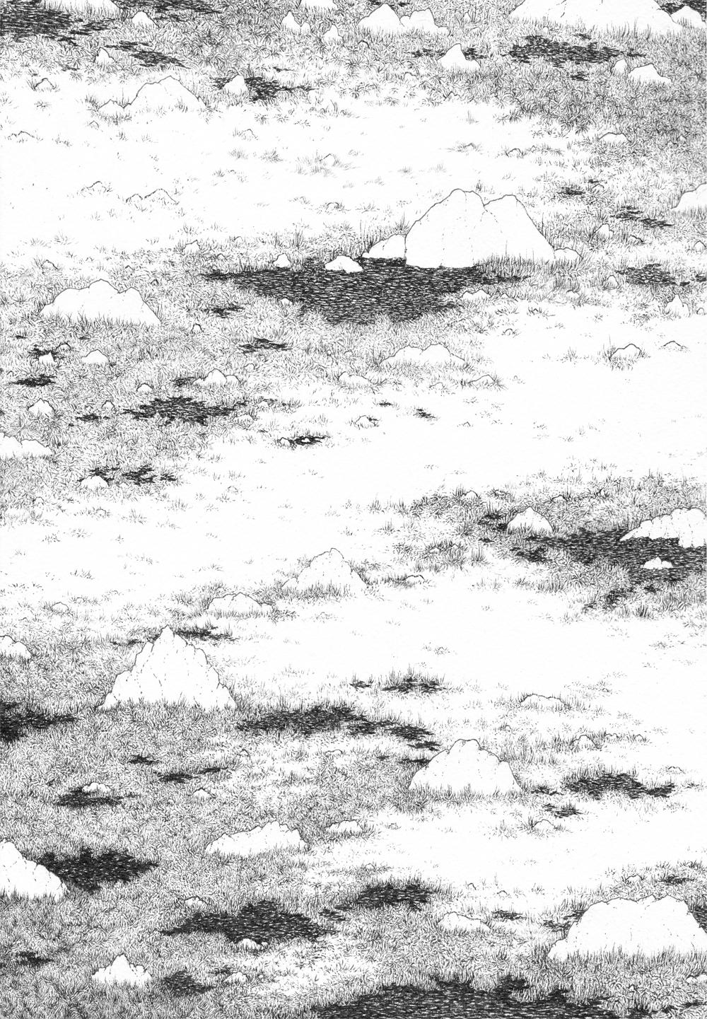 saltflatseee.jpg