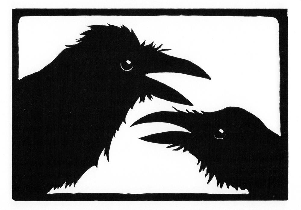 Raven Chat  •  © Fred Montague $48  •  image 8 x 5.5  •  mat 14 x 12 Edition size: 88  •  status: low quantity