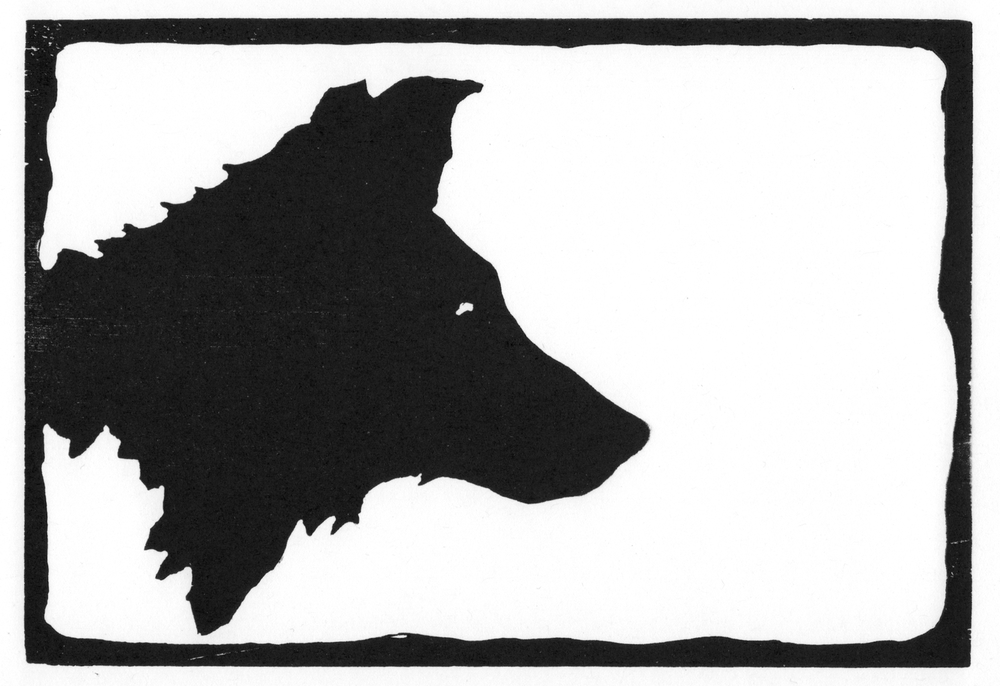 Young Wolf II  •  © Fred Montague $48  •  image 8 x 5.5  •  mat 14 x 12 Edition size: 88  •  status: low quantity