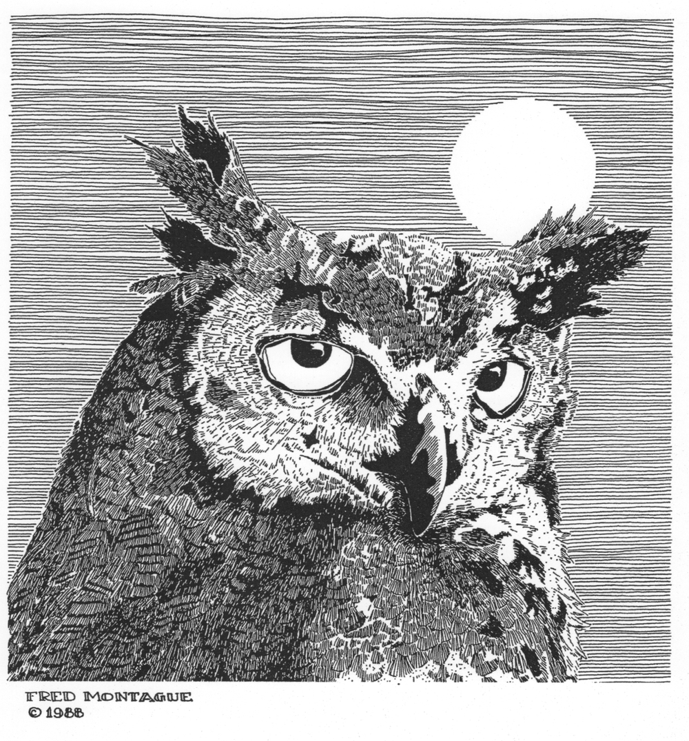 Great-Horned Owl• © Fred Montague  Letterpress Print • image 8.5 x 8.5 • matted 16 x 20  Sold Out