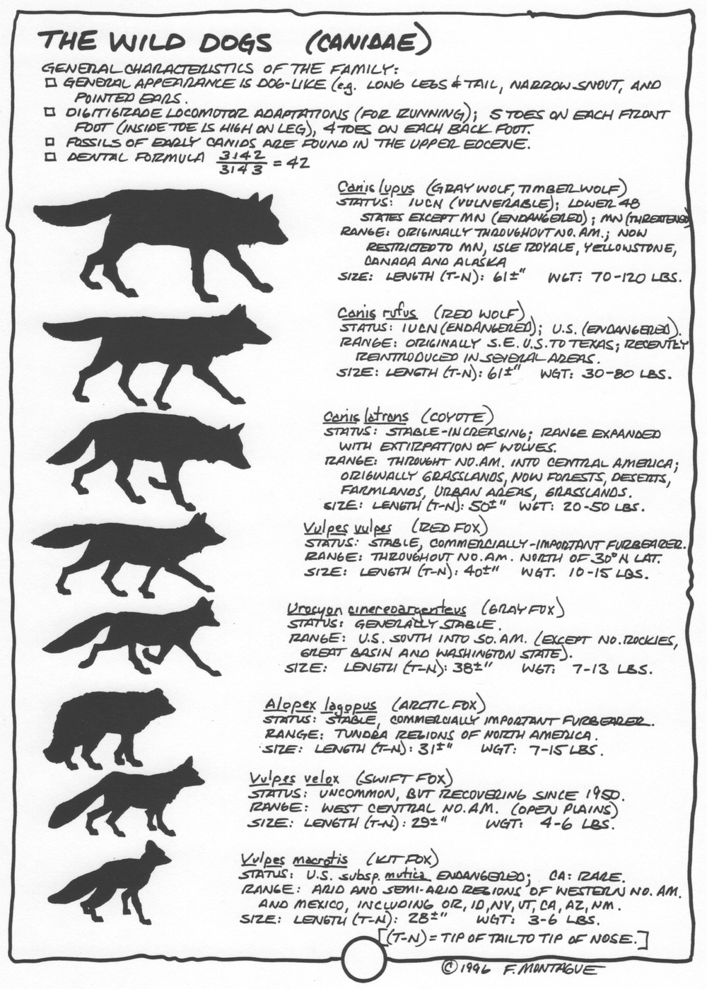 A page from Wa-Maka-Skan, a hand-lettered wildlife ecology textbook by Fred Montague. © 1996, 2012.