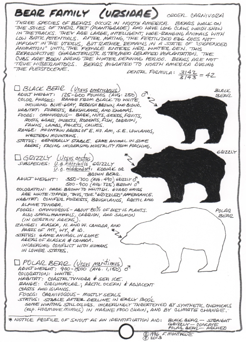 """North American Bears"" from Fred Montague's wildlife textbook, Wa-Maka-Skan."