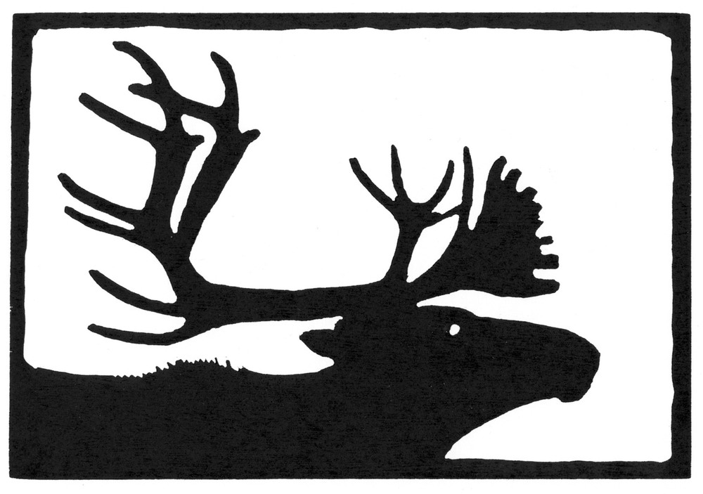 Caribou Bull  •  © Fred Montague $48  •  image 8 x 5.5  •  mat 14 x 12 Edition size: 88  •  status: available
