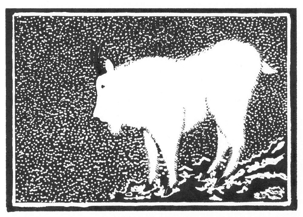 Mountain Goat •  © Fred Montague $48  •  image 8 x 5.5  •  mat 14 x 11 Edition size: 88  •  status: available