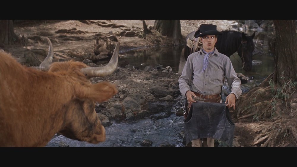 The Next Reel - The Magnificent Seven 37.jpg