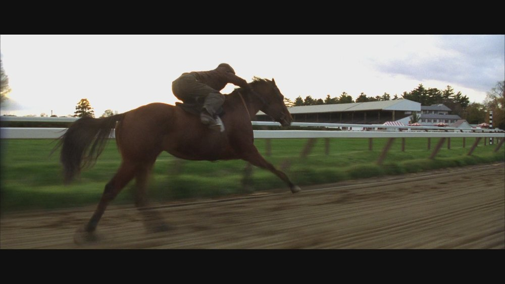 The Next Reel - Seabiscuit 46.jpg