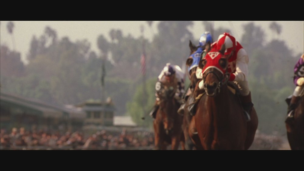 The Next Reel - Seabiscuit 54.jpg