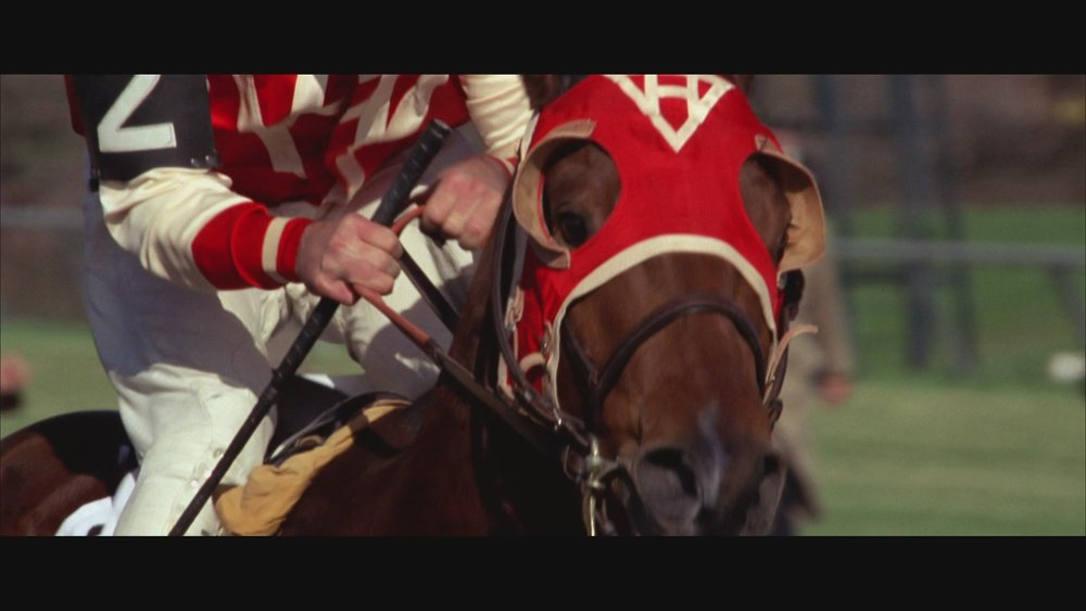 The Next Reel - Seabiscuit 81.jpg