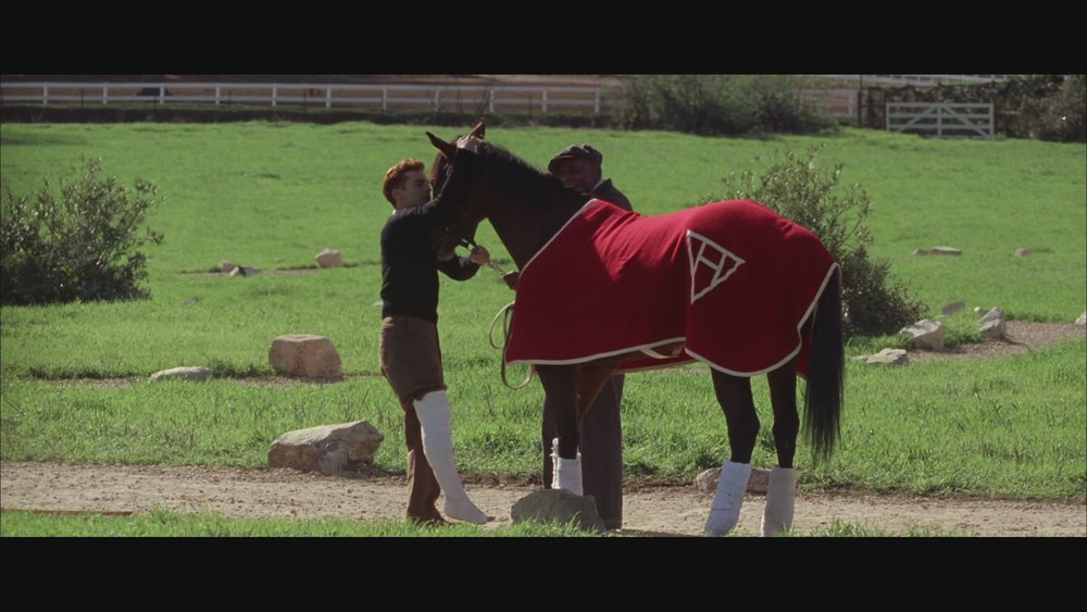 The Next Reel - Seabiscuit 87.jpg