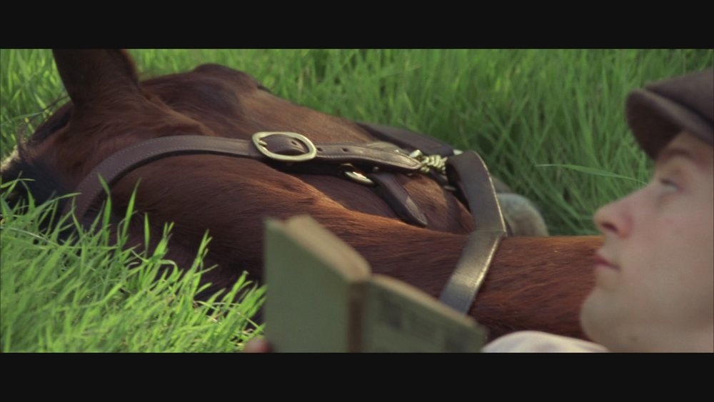The Next Reel - Seabiscuit 90.jpg