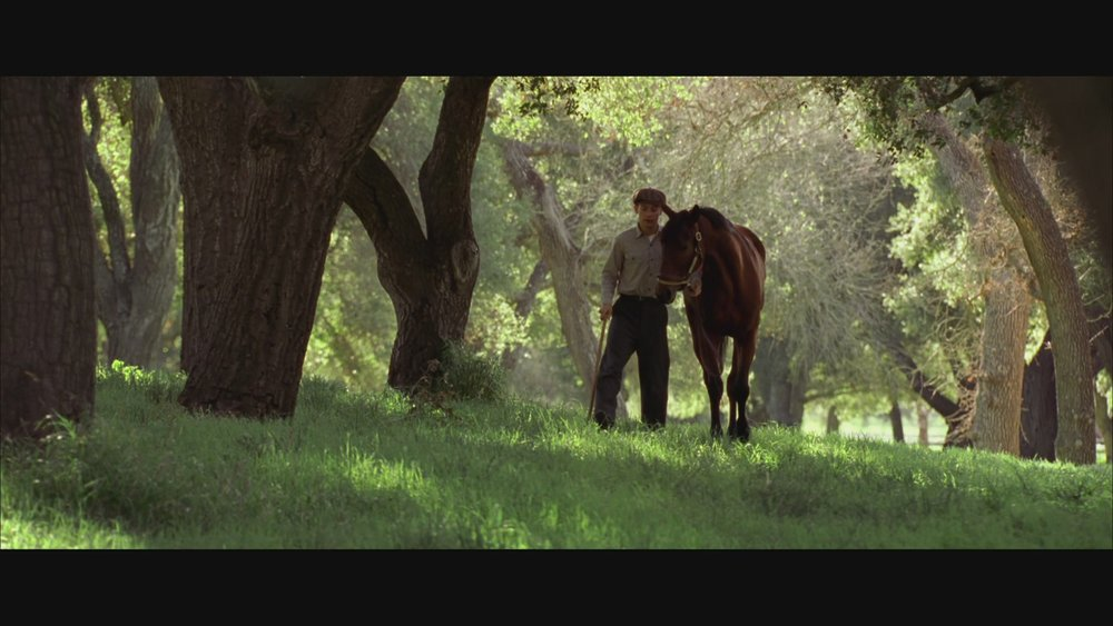 The Next Reel - Seabiscuit 89.jpg