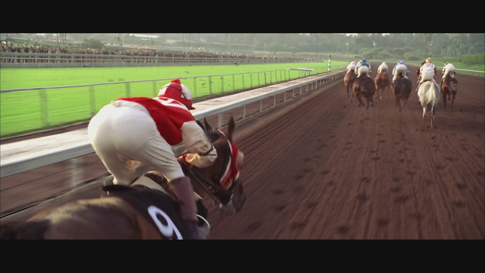 The Next Reel - Seabiscuit 101.jpg