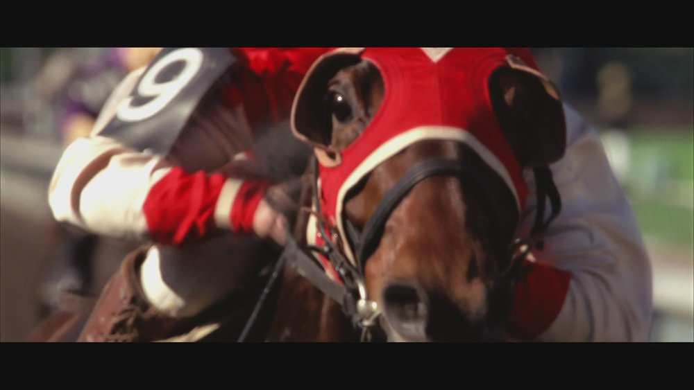 The Next Reel - Seabiscuit 105.jpg