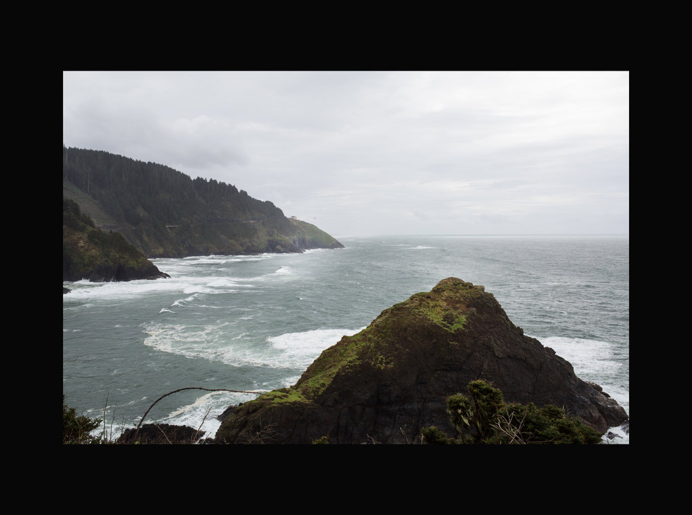 Oregon Coast, Home to Amber and the Disaster Dogs