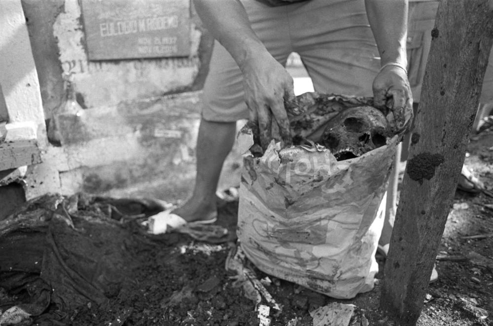 skull bones death dead clean manila