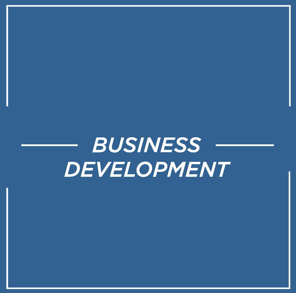 Business_Development_Blue_NEG.png
