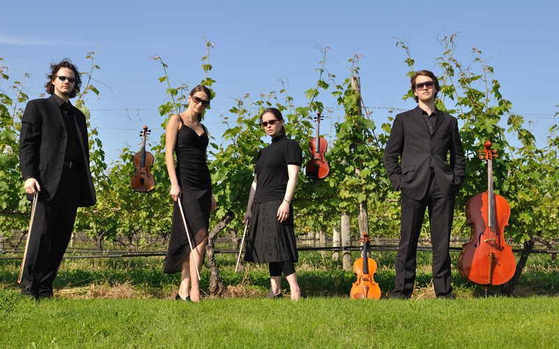 Vineyard Quartet for web.jpg