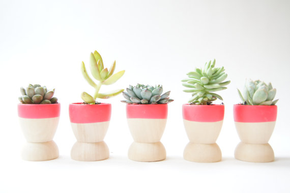 Mini Planters by WindandWillowHome