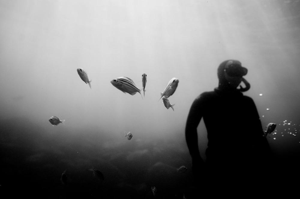 victor-caringal-sydney-freediving-04.JPG