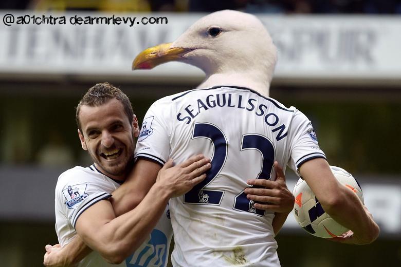 seagullsson.jpg