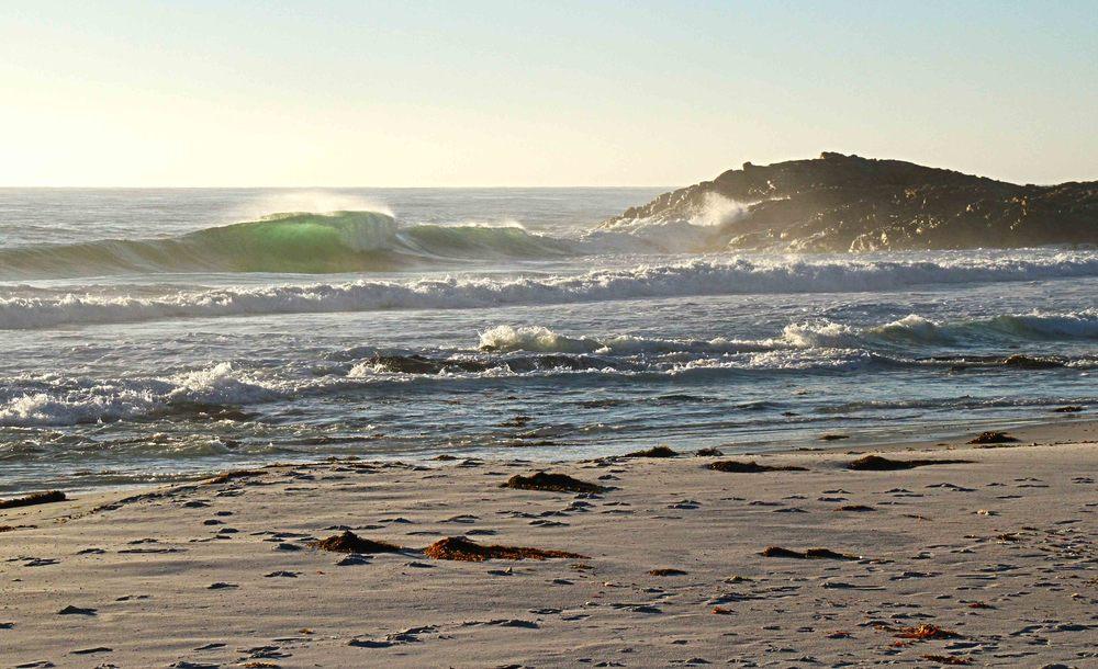 Wedge Friendly Beaches.jpg