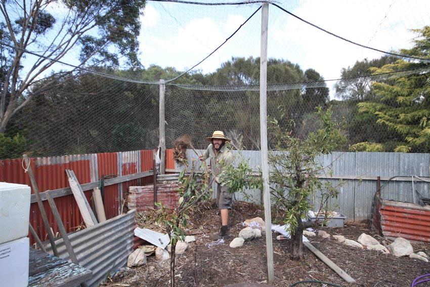 Lofty making compost, Kangaroo Island, SA