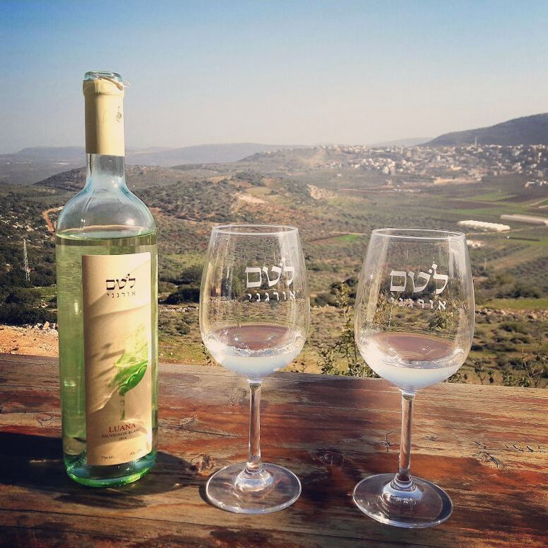 The breathtaking view from Kibbutz Lotem is best enjoyed in person, but here is a sneak preview. Photo: Kibbutz Lotem (Instagram)