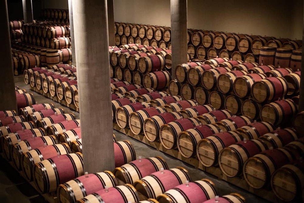 Domaine du Castel's reds aging in oak barrels. Photo credit: Domaine du Castel (Instagram)