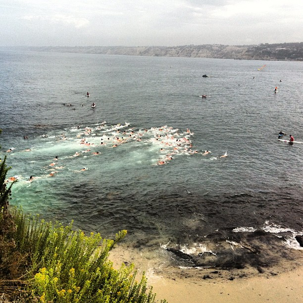 La Jolla Rough Water Swim #nofilter