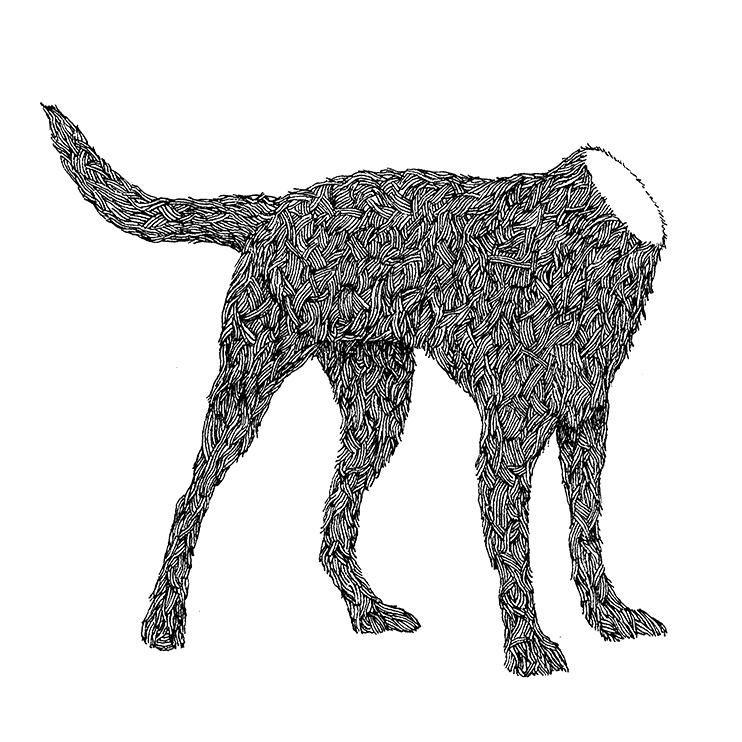 Headless Dog drawing
