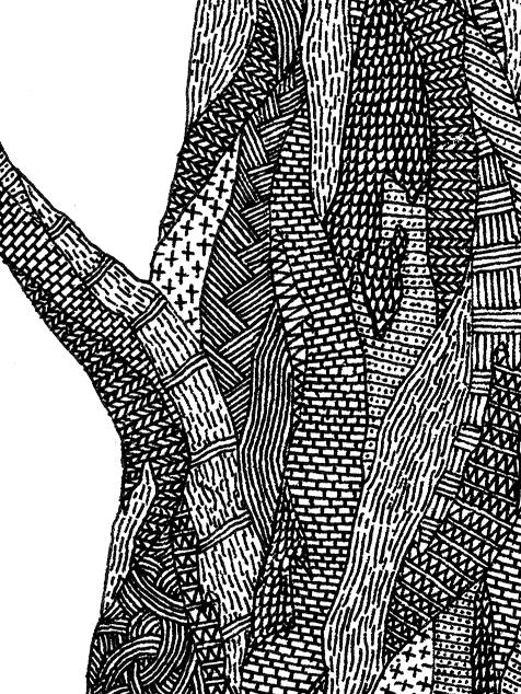 thumb-tree-2x-b.jpg