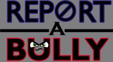 bullyreport 063013.png