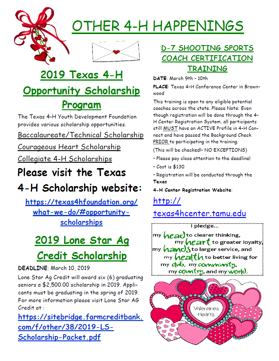 Nolan_County_4-H_Newsletter_February 2019_P4.png