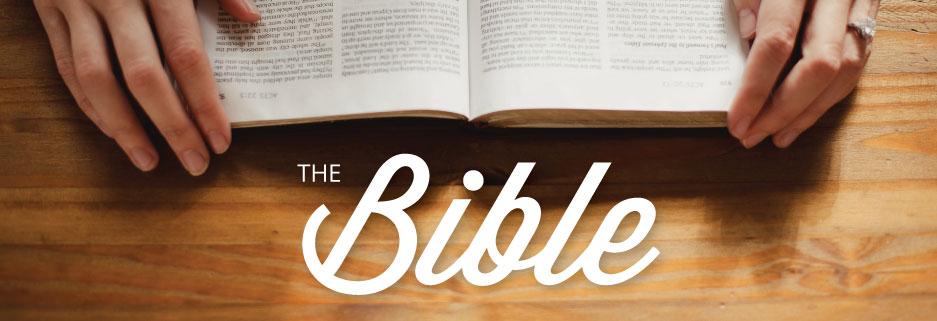 Bible-Header.jpg