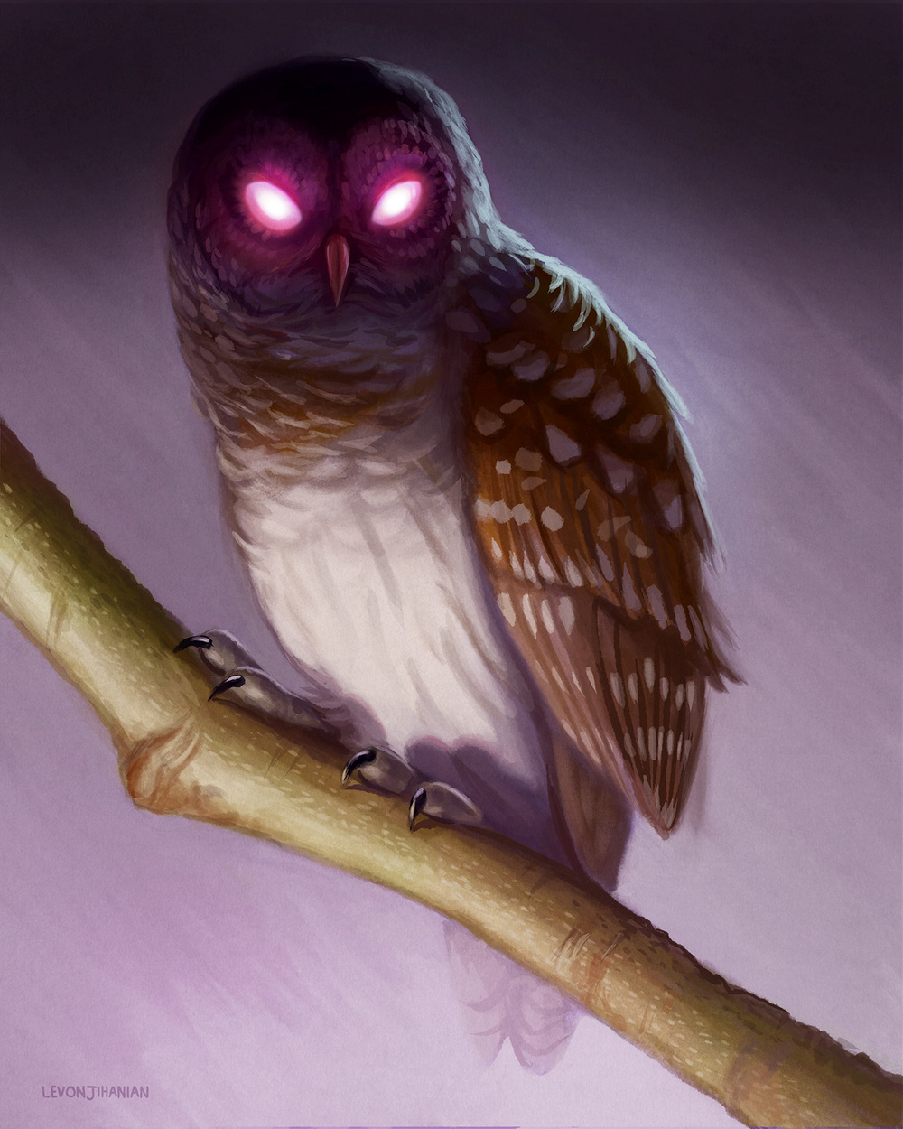 OWLFinal.jpg