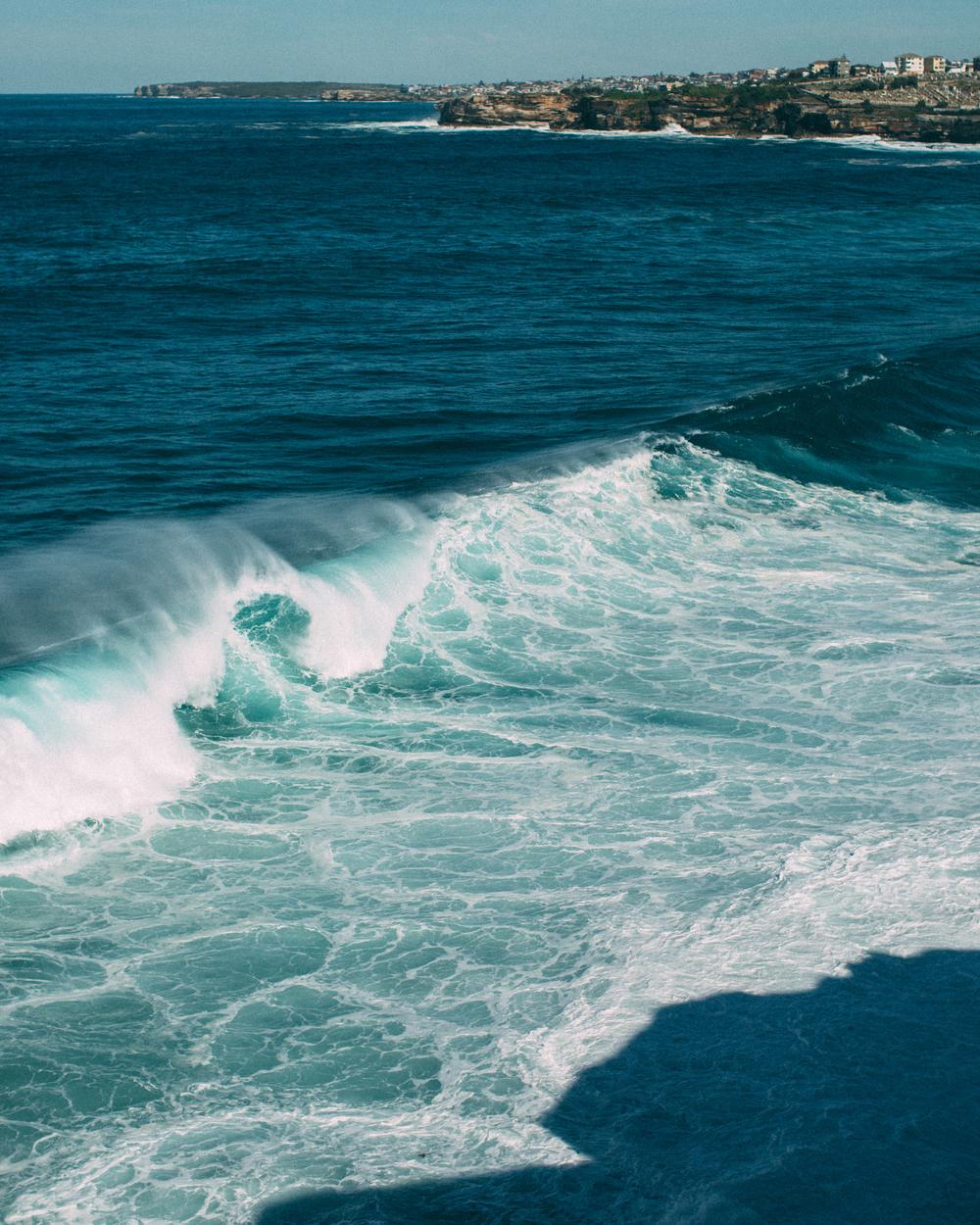Bondi Beach -6.jpg