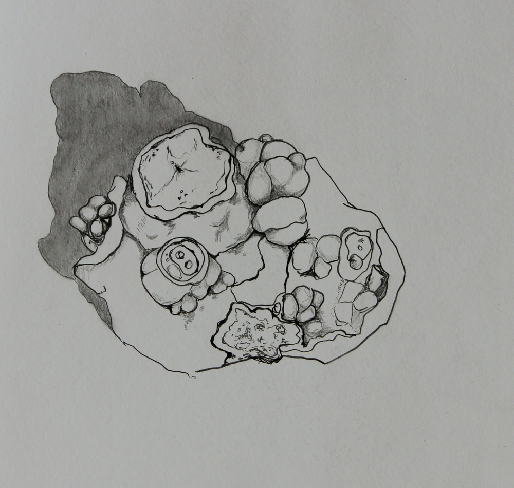 rock5.jpg