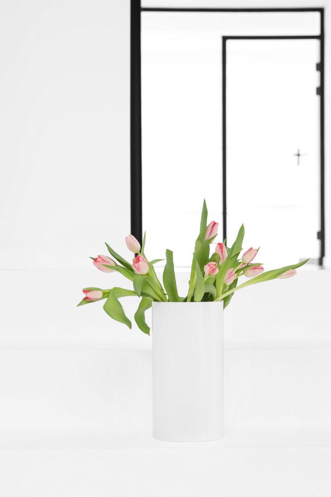 _T1P3104_lille_tulipan .jpg