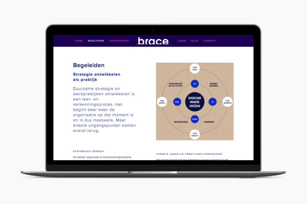 brace_website3.png