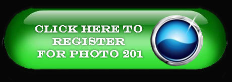 Photo 201 Registration button.jpg