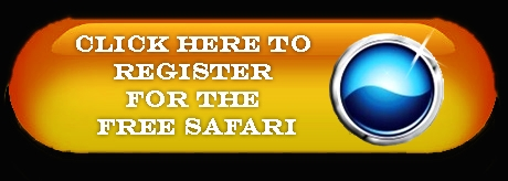 Free Safari Registration Button button.jpg