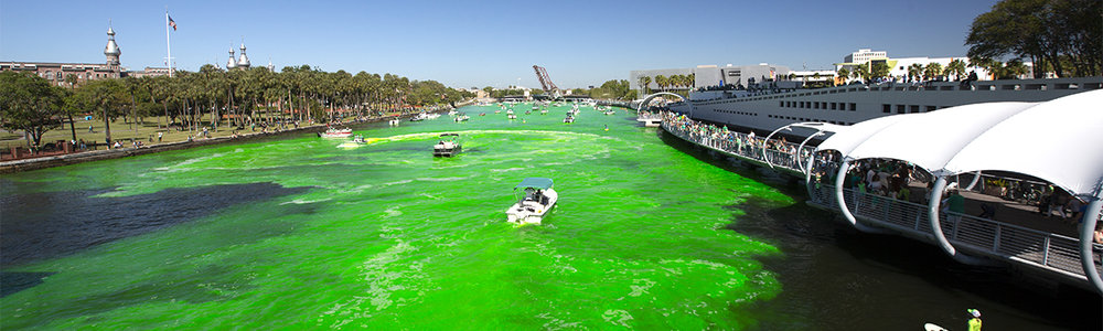 "For the seventh year in a row the Hillsborough River was turned green for the mayor's River o"" Green Fest. Yes, my friend, it's that green!"