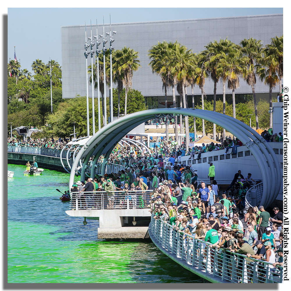 Thousands of people lined the Tampa Riverwalk to watch the transformation of the Hillsborough River from its usual brown to bright green.