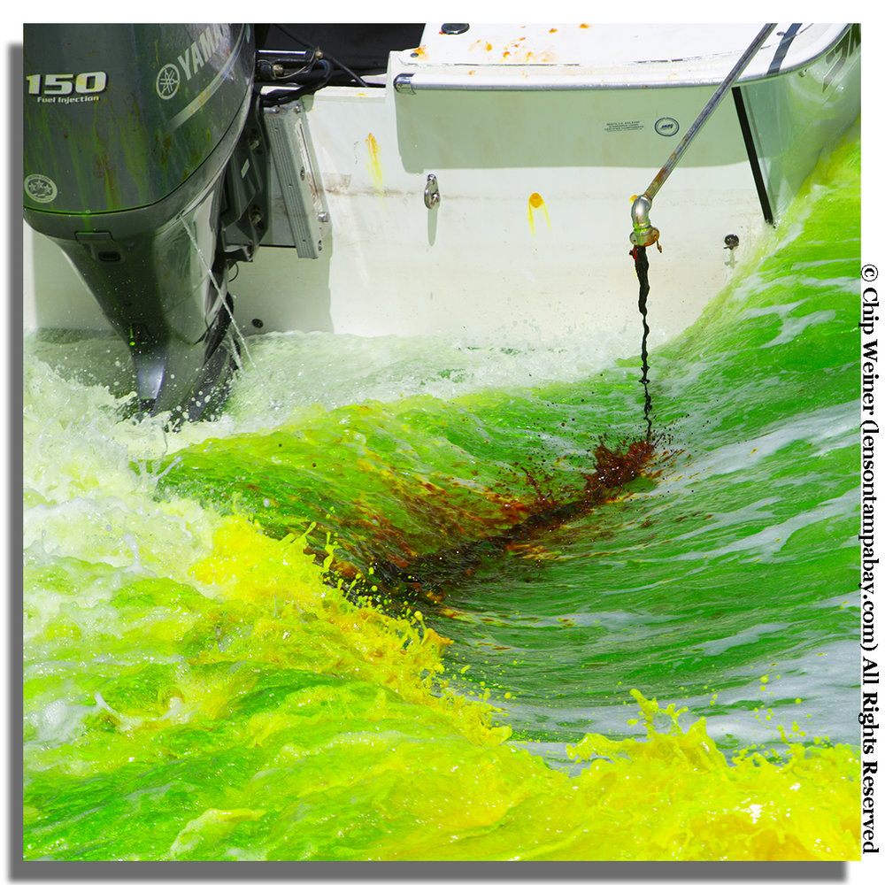The dye comes out of the boats nozzle as a reddish-brown, initially looks yellow, and finally a bright Kelly green