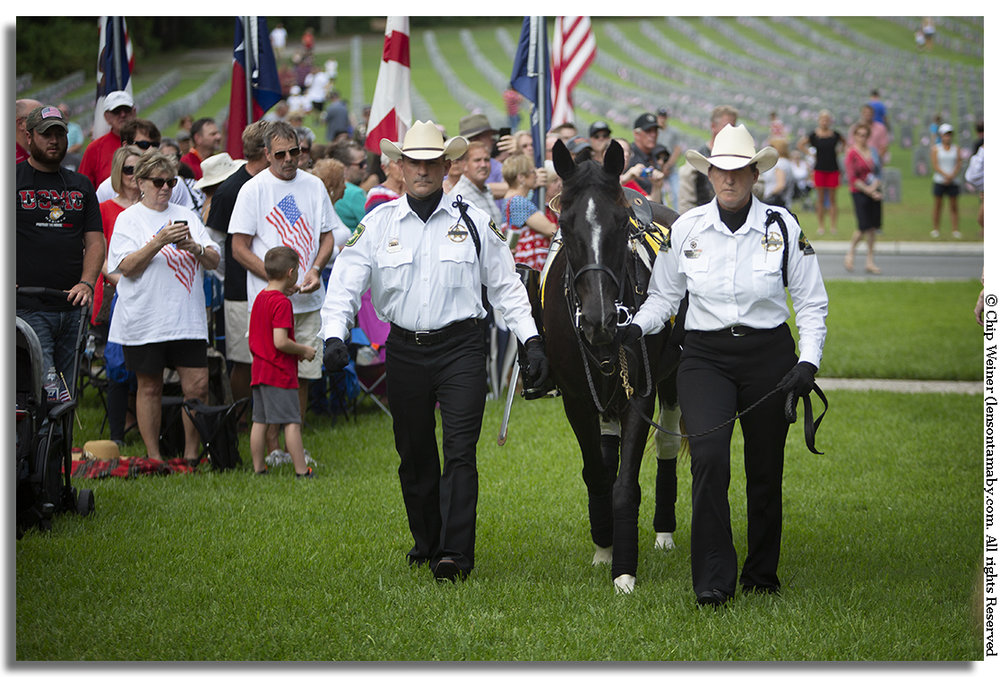A riderless horse symbolizing fallen soldiers is presented by the Pasco Mounted Posse