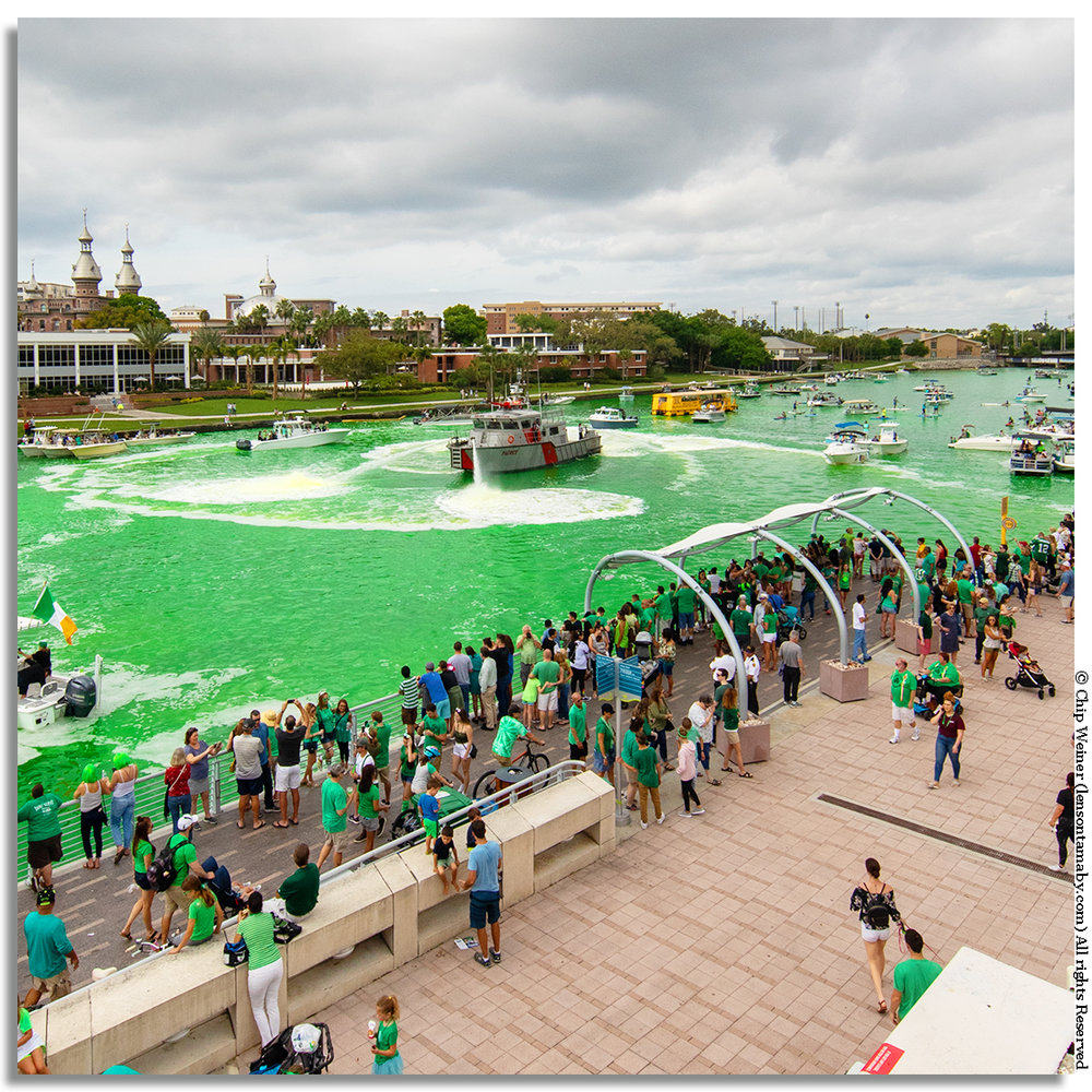 The Hillsborough River is dyed green to celebrate the 2019 Mayors River O'Green in downtown Tampa